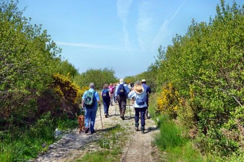 Goss Moor Cycle Trail the Cornish Way